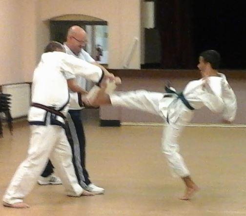 daniel kicking the board 9 october 2014 (3)
